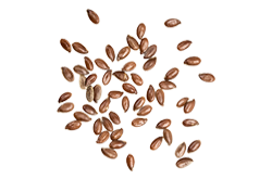http://biscuit.ro/wp-content/uploads/2017/07/bread_transparent_07.png